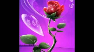 Gregorian The Rose.wmv