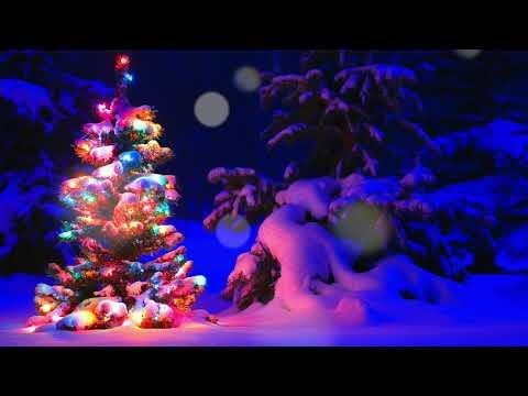 CHRISTMAS CANON - STAY METAL RAY