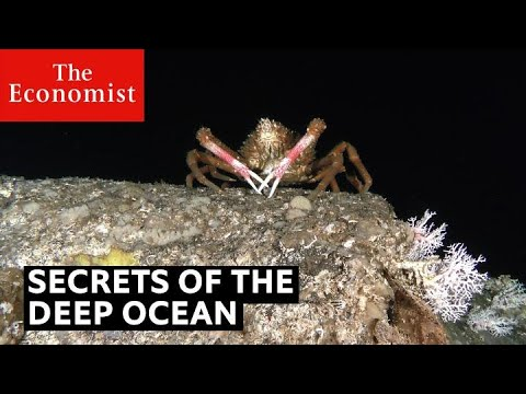 Secrets of the deep ocean | The Economist