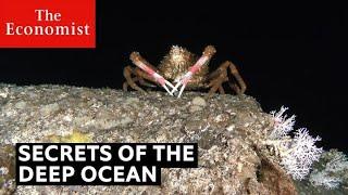 Secrets of the deep ocean | The Economist