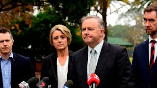 Kristina Keneally is causing 'immense damage' to Labor after foreign-family call