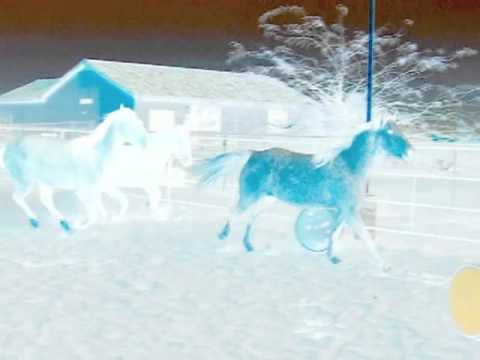 Spirit Horse Video 2 with Effects music by Sacred Spirit