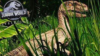 SAFARI DOS DINOSSAUROS [#20] | Manada de Estegossauro, Vale Encantado | Jurassic W Evolution | PT/BR