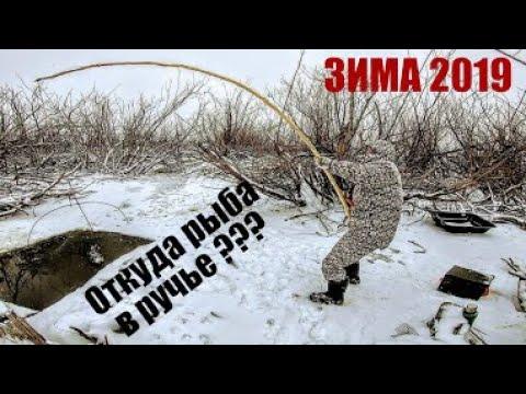 Тонны рыбы в НАНО ручье ЁКЛМН! Рыбалка на паук зимой .Подводные съемки рыбалки .Рыбалка зимой 2019