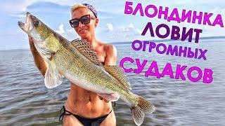 ОГРОМНЫЕ СУДАКИ ДУРЕЮТ В ЖАРУ ОТ ТАКИХ ПРИМАНОК Рыбалка на судака 2021 Ловля судака летом на джиг