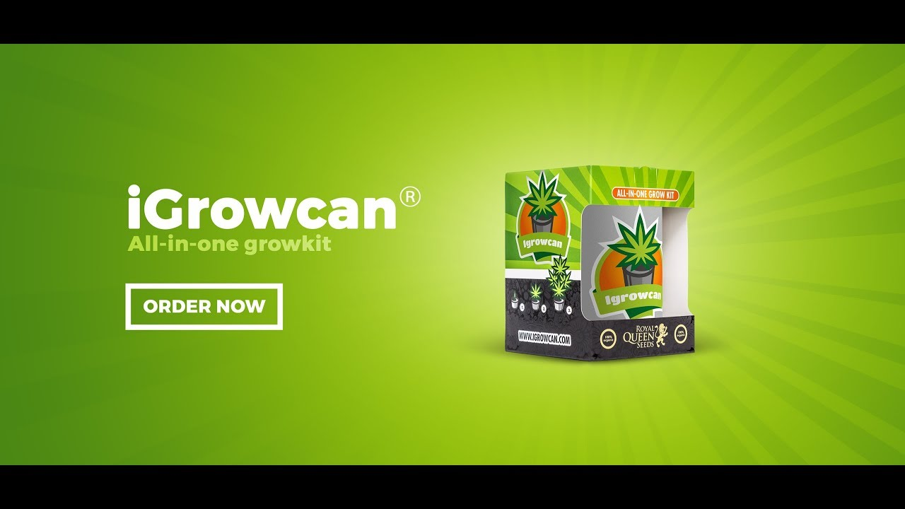 iGrowCan Growing Kit - White Widow Automatic