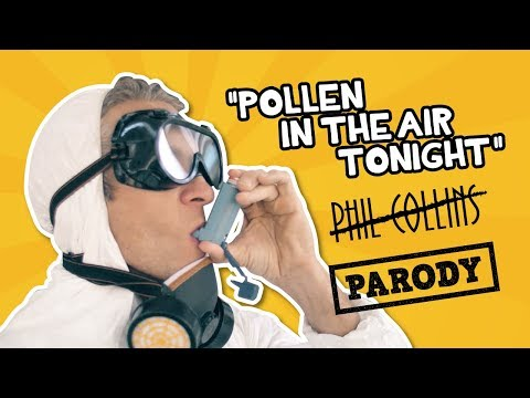 """""""Pollen In the Air""""  PARODY Phil Collins  In the Air"""