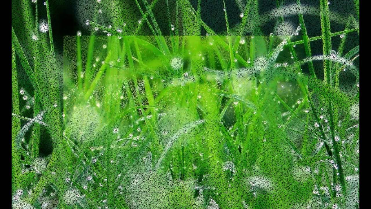 анимация роса на траве платья