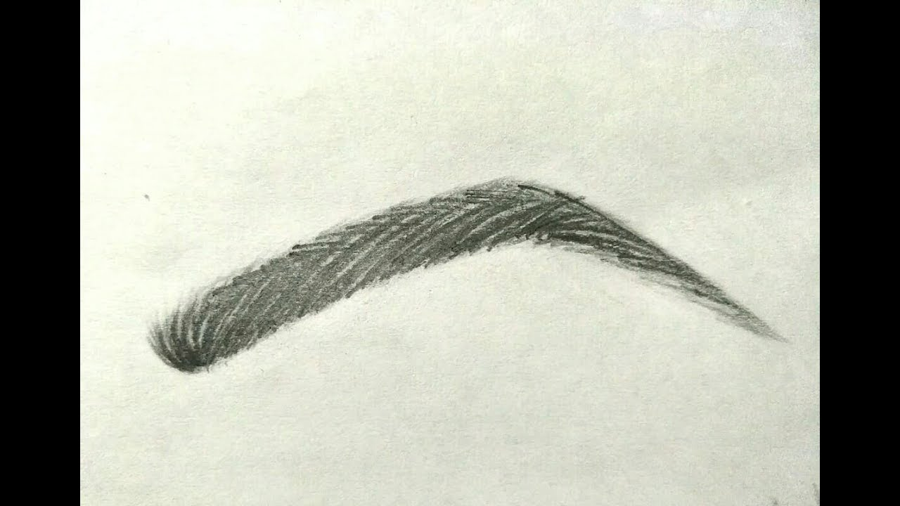 Realistic eyebrows drawing easily step by step for beginners by painting ideas
