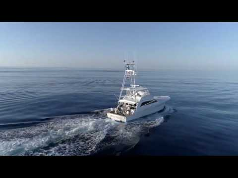 90 BAYLISS BLUE MARLIN FISHING  I  Billfish Movement TV 015