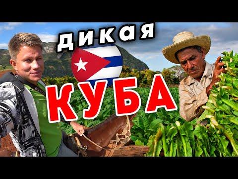 Как живут в ДЕРЕВНЕ на Кубе? Как делают кубинские сигары? Долина Виньялес.