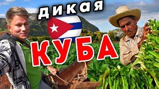 Как живут в ДЕРЕВНЕ на Кубе? Как делают кубинские сигары? Виньялес - как Таиланд без моря?
