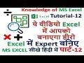 Excel में Expert बनिए  ये वीडियो Excel में आपको बनाएगा हीरो  Basic Knowledge of MS ExcelTutorial-12