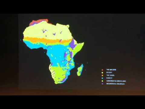 Map Of Africa 2010.Map Marathon 2010 David Adjaye African Metropolitan Architecture