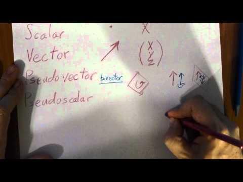 Scalars, Vectors, and Pseudo Vectors and Scalars