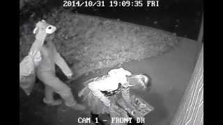Halloween Theft Thumbnail