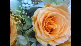 NHK朝ドラ『とと姉ちゃん』の主題歌がKPEの洗練された演奏で心地よいピ...
