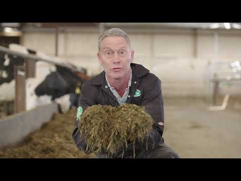 Arla Dairy UK | Welcome To Holly Green Farm!
