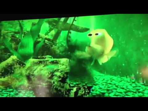 Finding nemo youtube for Dirty fish tank