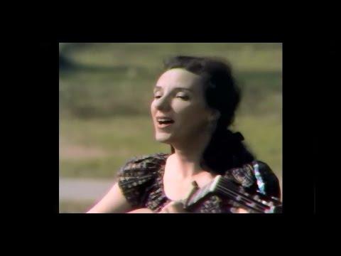 Sonia Malkine - Le Vin Gaulois