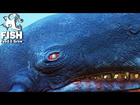 FEED E GROW FISH #50 = A BALEIA MOB DICK