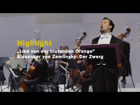 """""""lied-von-der-blutenden-orange"""",-sung-by-david-butt-philip,-2019-(highlights)"""