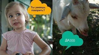 Sofia и Говорящие Козлята на детской площадке Смешная озвучка животных