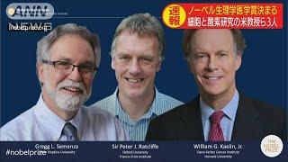 今年のノーベル賞第1弾 生理学医学賞に米英の3教授(19/10/07)