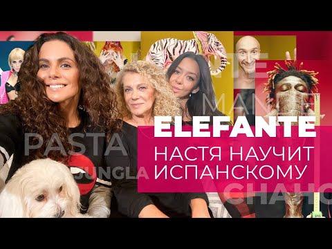 УЧИМ ИСПАНСКИЙ И ПЕРЕВОДИМ ELEFANTE ☆ NKBLOG ☆