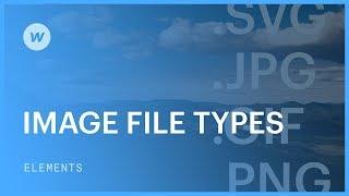 Image file types (JPG, PNG, SVG, GIF)  - Web design tutorial
