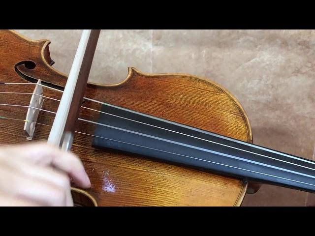 Master Build deluxe Wood Antonio Stradivarius 1715