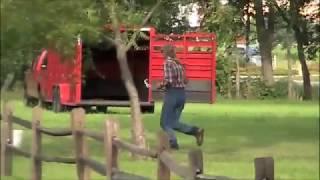 Extreme Cowboy Race Run #2