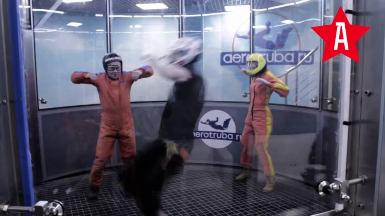 Авиатруба в москве forex сигнальные сервисы