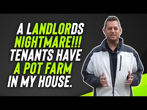 A Landlords Nightmare!!!  Tenants Have A Pot Farm in my house.