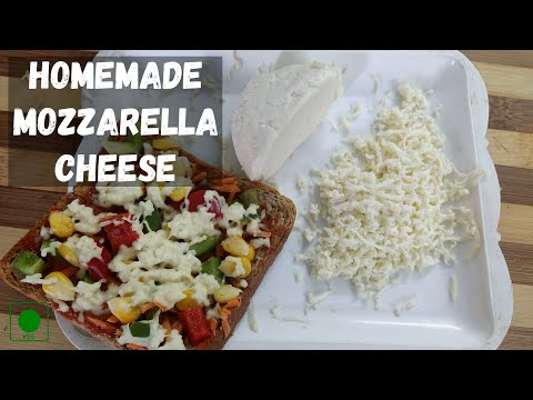 Mozzarella cheese at