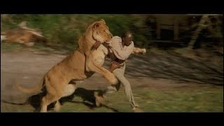 [Best Animal Fights]  [Wild Animal Attack]  Every animal attack in Roar (1981)