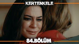 Kertenkele 84. Bölüm