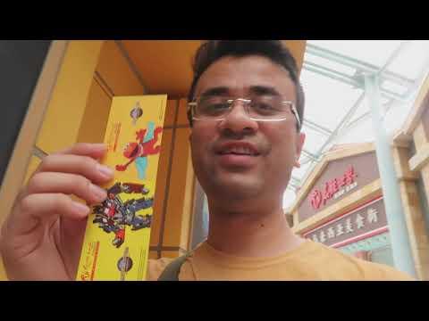 SINGAPORE 5 DAYS ITINERARY IN HINDI (SINGAPORE BUDGET TRAVEL TIPS)