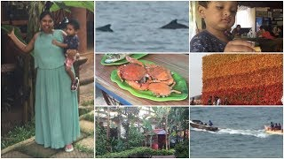 Day 2 at GOA vlog    North Goa    Saw Dolphin for the first time    full day enjoying   sireesha