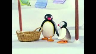 Pingu: Pingu