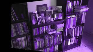 Amy's Bookshelf Reviews