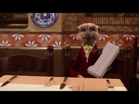 Introducing Meerkat Meals - How to