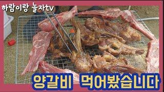 불PD)캠핑요리-양갈비 숯불구이(with 풍무양고기) …