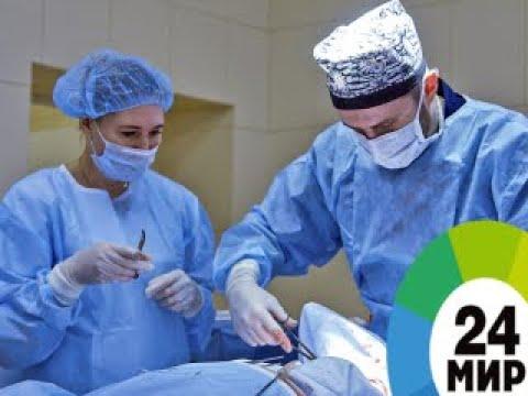 Вылечить рак: о новых достижениях в борьбе с онкологией - МИР 24