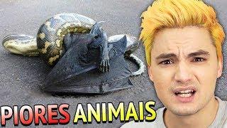 PIORES ANIMAIS DA AUSTRÁLIA - TÔ COM MEDO!