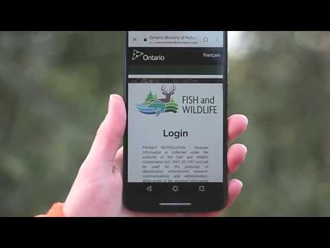 Fish And Wildlife Licensing Service: How Does A Licence Summary Work?