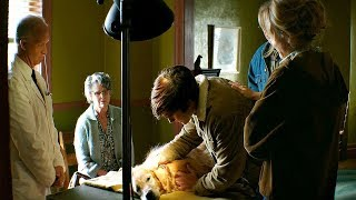 Бейли умирает. Итан и семья с ним прощаются. Собачья жизнь