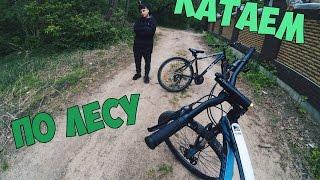 Vlog:Катаем по лесу