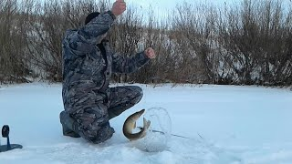 Рыбалка на жерлицы. За щукой в декабре. Рыба ЕСТЬ!!!