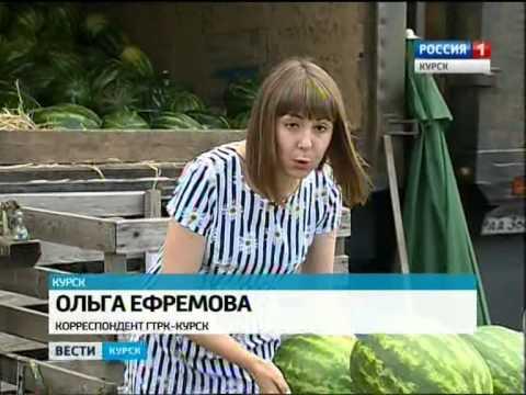 КурскТВ - новости Курска онлайн